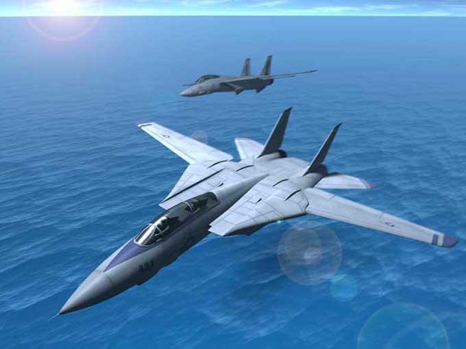 F 14 (戦闘機)の画像 p1_18